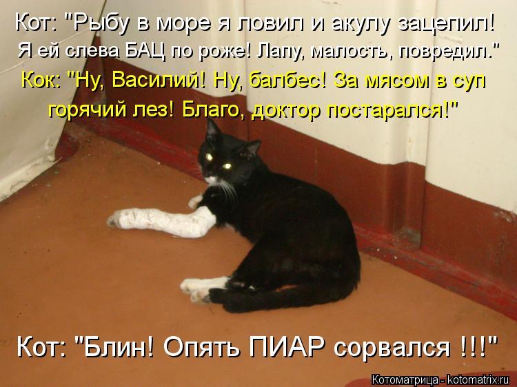 """Котоматрица: Кок: """"Ну, Василий! Ну, балбес! За мясом в суп горячий лез! Благо, доктор постарался!"""" Кот: """"Блин! Опять ПИАР сорвался !!!"""" Кот: """"Рыбу в море я ловил и"""