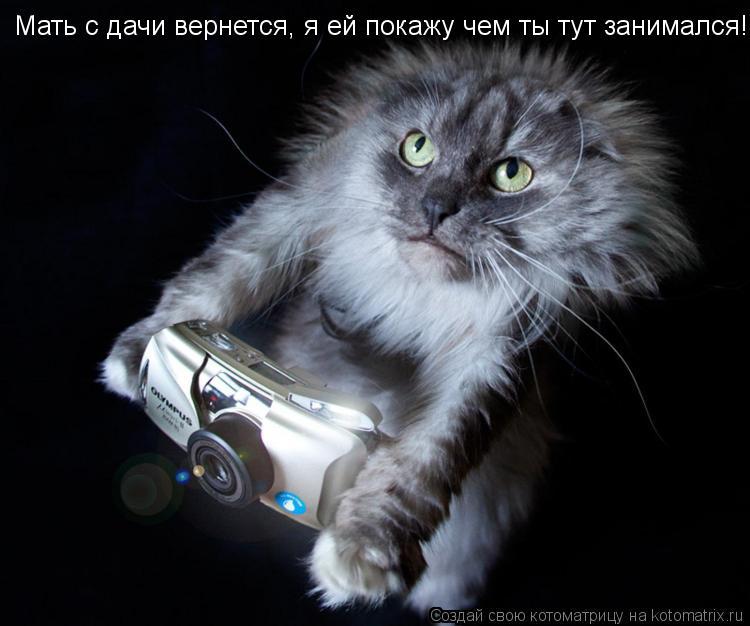 Котоматрица: Мать с дачи вернется, я ей покажу чем ты тут занимался!