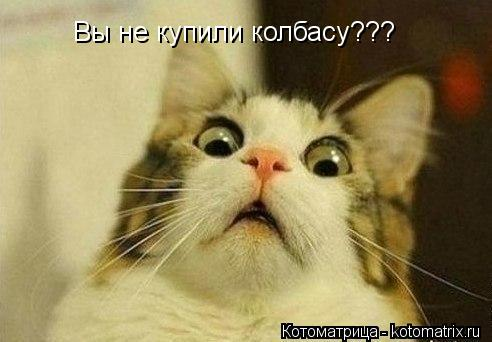 Котоматрица: Вы не купили колбасу???