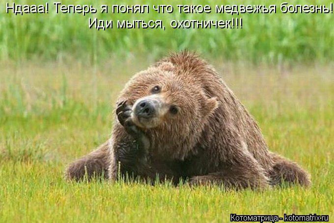 Котоматрица: Ндааа! Теперь я понял что такое медвежья болезнь! Иди мыться, охотничек!!!