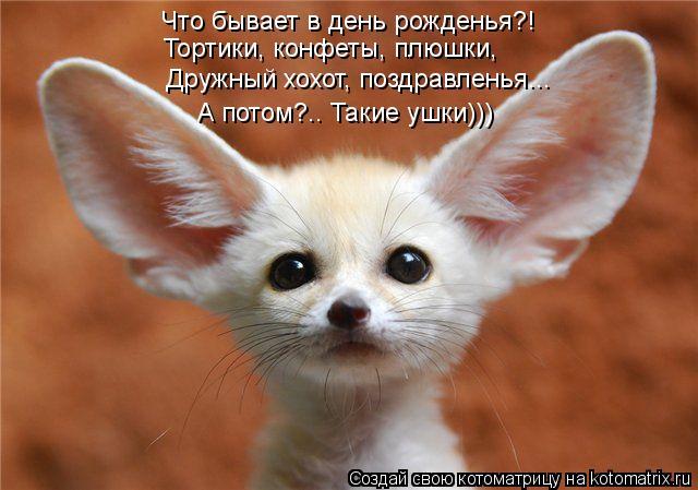 http://kotomatrix.ru/images/lolz/2012/07/28/kotomatritsa_nO.jpg