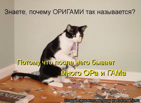 Котоматрица: Знаете, почему ОРИГАМИ так называется? много ОРа и ГАМа Потому что после него бывает