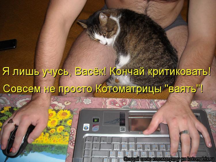 """Котоматрица: Я лишь учусь, Васёк! Кончай критиковать! Совсем не просто Котоматрицы """"ваять""""!"""