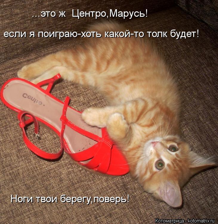 Котоматрица: ...это ж  Центро,Марусь! если я поиграю-хоть какой-то толк будет! Ноги твои берегу,поверь!