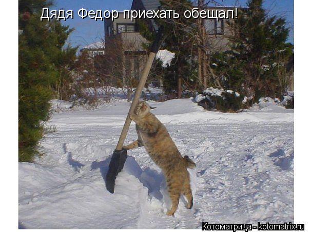 Котоматрица: Дядя Федор приехать обещал!