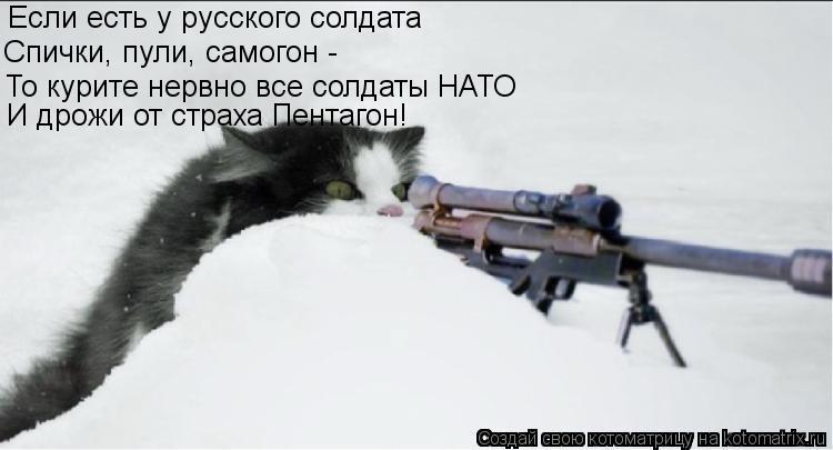 Котоматрица: Если есть у русского солдата Спички, пули, самогон -  То курите нервно все солдаты НАТО И дрожи от страха Пентагон!