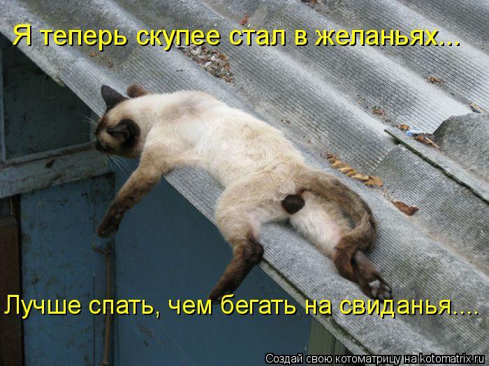 Котоматрица: Я теперь скупее стал в желаньях... Лучше спать, чем бегать на свиданья....