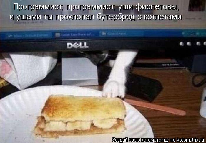Котоматрица: Программист, программист, уши фиолетовы,  и ушами ты прохлопал бутерброд с котлетами.
