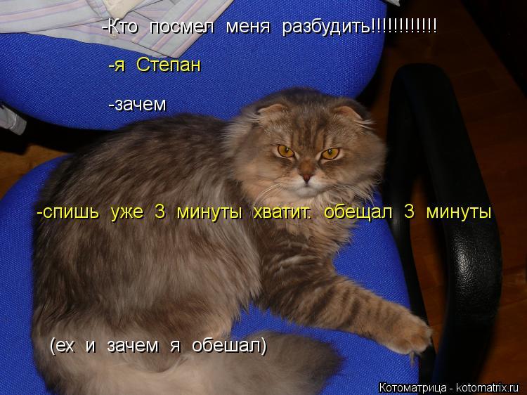 Котоматрица: -Кто  посмел  меня  разбудить!!!!!!!!!!!! -я  Степан -зачем (ех  и  зачем  я  обешал) -спишь  уже  3  минуты  хватит.  обещал  3  минуты