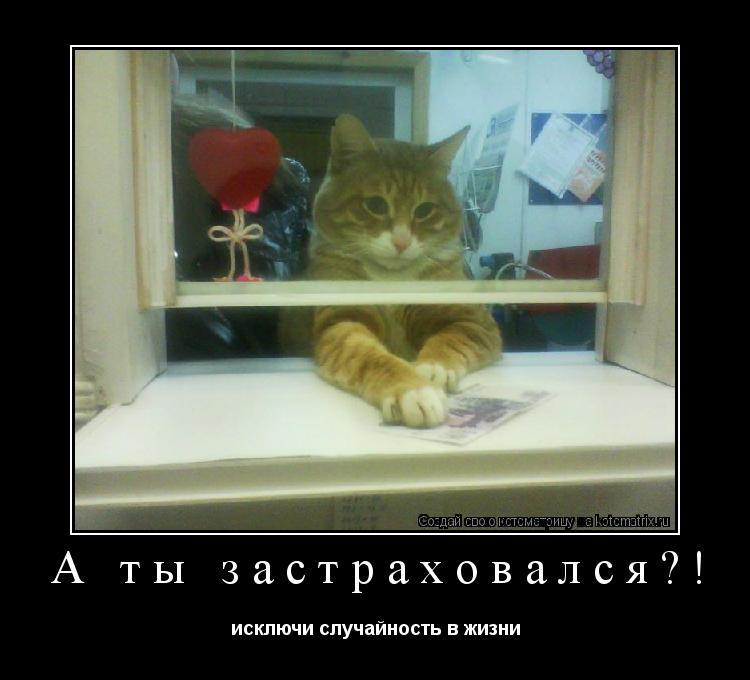 Котоматрица: А ты застраховался?! исключи случайность в жизни