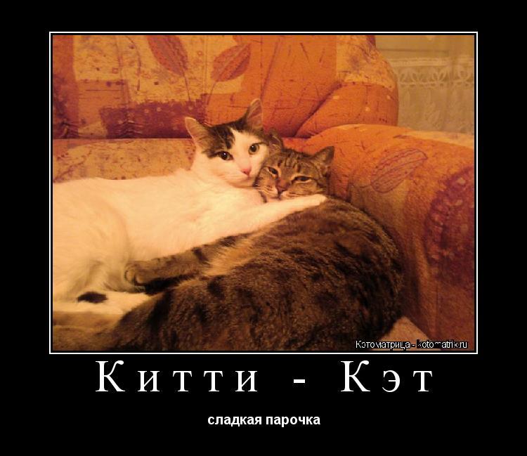 Котоматрица: Китти - Кэт сладкая парочка