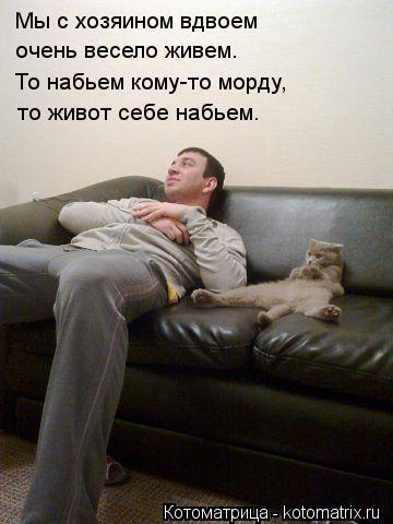 Котоматрица: Мы с хозяином вдвоем очень весело живем. То набьем кому-то морду, то живот себе набьем.