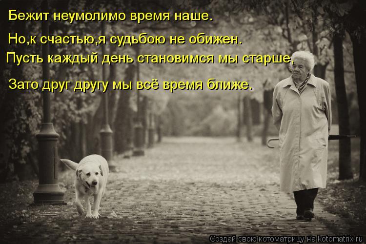 Котоматрица: Бежит неумолимо время наше. Но,к счастью,я судьбою не обижен. Пусть каждый день становимся мы старше, Зато друг другу мы всё время ближе.