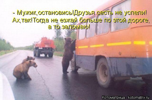 Котоматрица: - Мужик,остановись!Друзья сесть не успели! Ах,так!Тогда не езжай больше по этой дороге, а то заломаю!