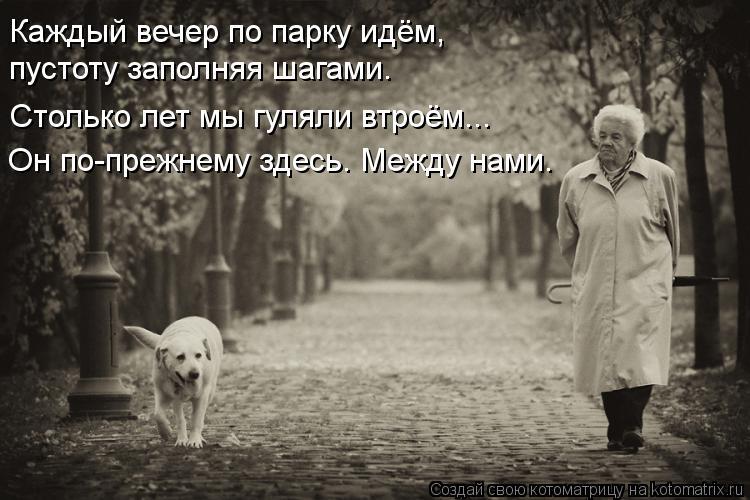 Котоматрица: Каждый вечер по парку идём, пустоту заполняя шагами. Столько лет мы гуляли втроём... Он по-прежнему здесь. Между нами.