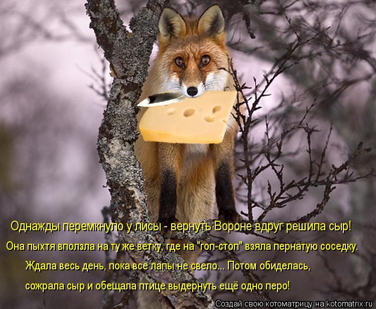 """Котоматрица: Однажды перемкнуло у лисы - вернуть Вороне вдруг решила сыр! Она пыхтя вползла на ту же ветку, где на """"гоп-стоп"""" взяла пернатую соседку. Ждала"""