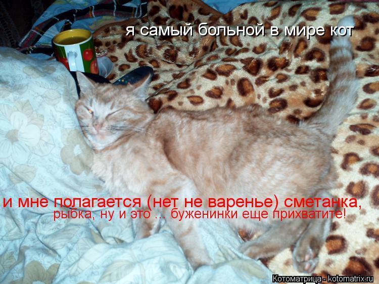 Котоматрица: я самый больной в мире кот и мне полагается (нет не варенье) сметанка,  рыбка, ну и это ... буженинки еще прихватите!