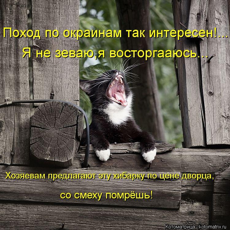 Котоматрица: Поход по окраинам так интересен!... Я не зеваю,я восторгааюсь... Хозяевам предлагают эту хибарку по цене дворца, со смеху помрёшь!
