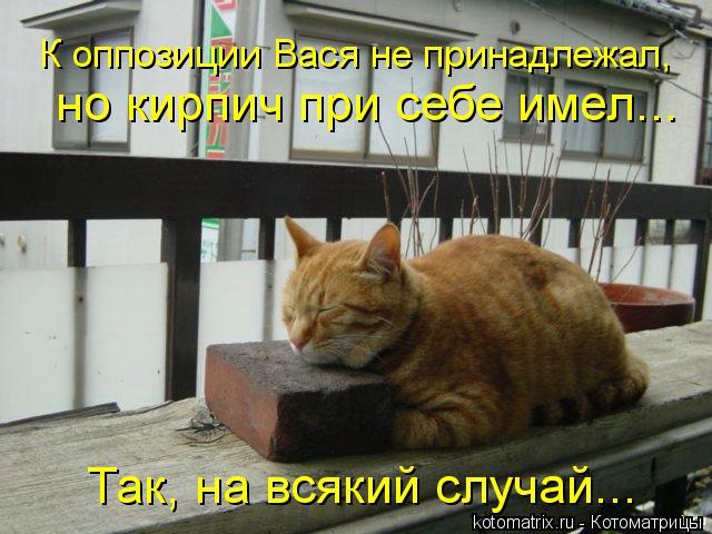 Котоматрица: К оппозиции Вася не принадлежал, но кирпич при себе имел... Так, на всякий случай...