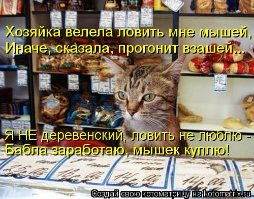 Котоматрица: Хозяйка велела ловить мне мышей, Иначе, сказала, прогонит взашей... Я НЕ деревенский, ловить не люблю - Бабла заработаю, мышек куплю!