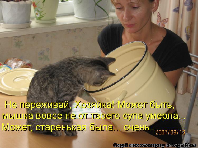 Котоматрица: Не переживай, Хозяйка! Может быть,  мышка вовсе не от твоего супа умерла... Может, старенькая была... очень...