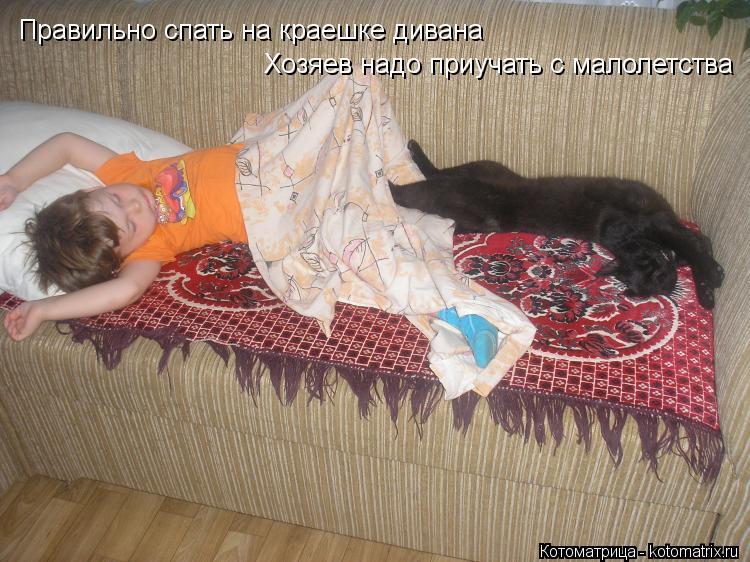 Котоматрица: Правильно спать на краешке дивана Хозяев надо приучать с малолетства