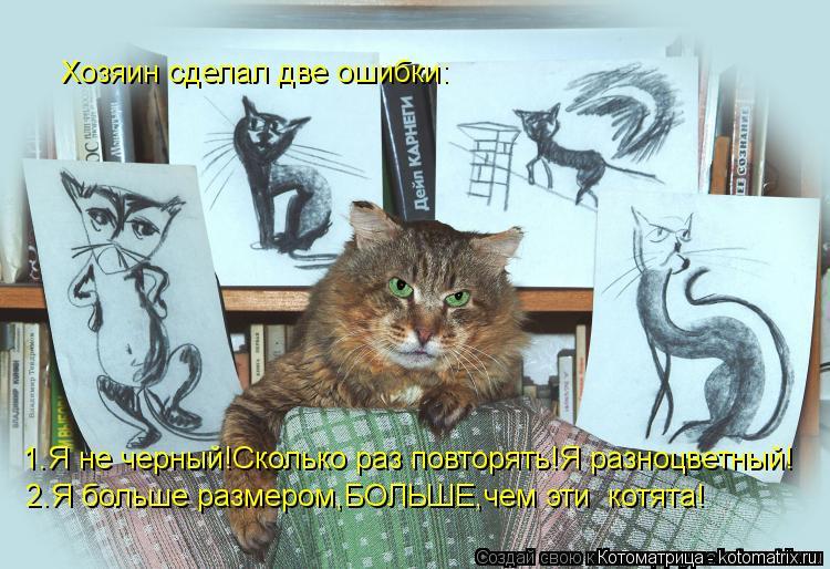 Котоматрица: Хозяин сделал две ошибки: 1.Я не черный!Сколько раз повторять!Я разноцветный! 2.Я больше размером,БОЛЬШЕ,чем эти  котята!
