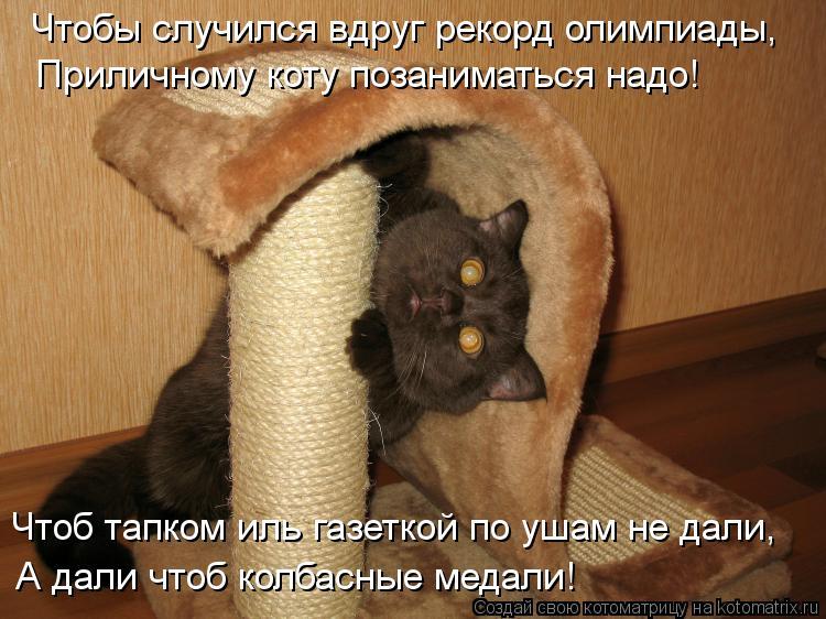 Котоматрица: Чтобы случился вдруг рекорд олимпиады,   Приличному коту позаниматься надо!   Чтоб тапком иль газеткой по ушам не дали, А дали чтоб колбасные