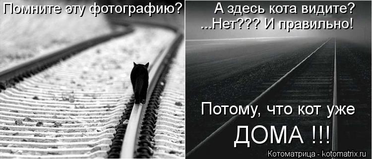 Котоматрица: Помните эту фотографию?        А здесь кота видите? ...Нет??? И правильно! Потому, что кот уже ДОМА !!!