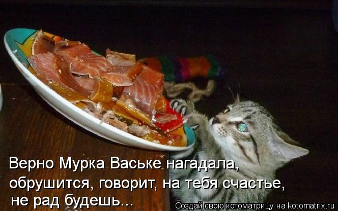 Котоматрица: Верно Мурка Ваське нагадала, обрушится, говорит, на тебя счастье, не рад будешь...