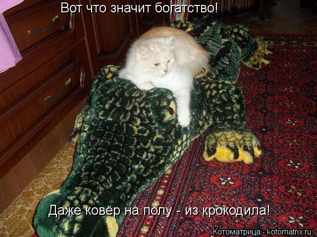 Котоматрица: Вот что значит богатство!  Даже ковёр на полу - из крокодила!
