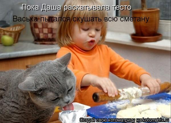 Котоматрица: Пока Даша раскатывала тесто Васька пытался скушать всю сметану