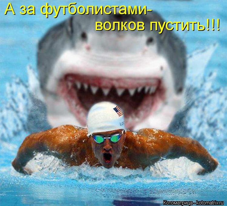 Котоматрица: А за футболистами- волков пустить!!!