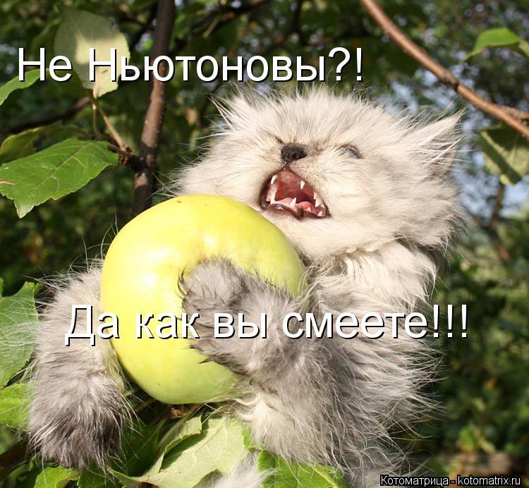 Котоматрица: Не Ньютоновы?! Да как вы смеете!!!