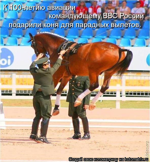 Котоматрица: К 100-летию авиации  командующему ВВС России подарили коня для парадных вылетов.