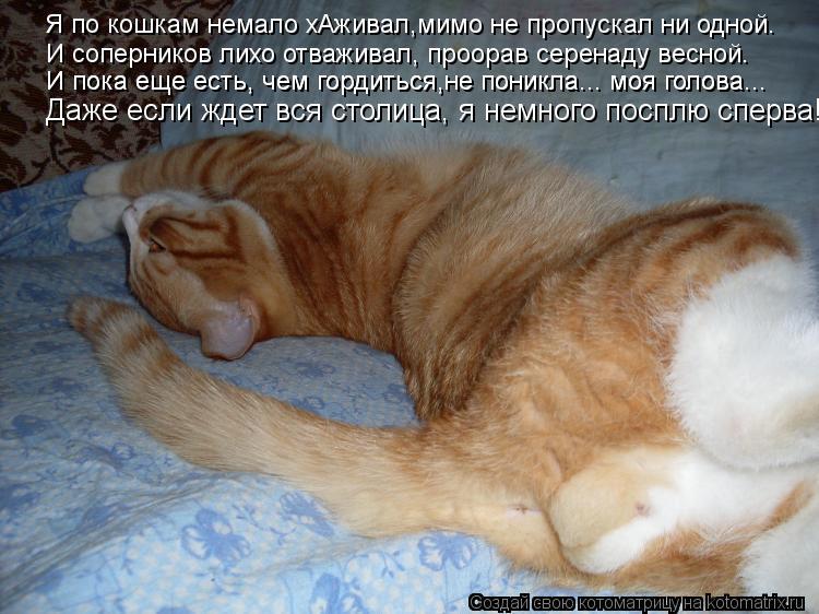 Котоматрица: Я по кошкам немало хАживал,мимо не пропускал ни одной. И соперников лихо отваживал, проорав серенаду весной. И пока еще есть, чем гордиться,н