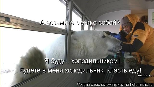 Котоматрица: А возьмите меня с собой? Я буду... холодильником! Будете в меня,холодильник, класть еду!