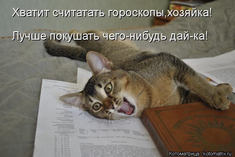 Котоматрица: Хватит считатать гороскопы,хозяйка! Лучше покушать чего-нибудь дай-ка!