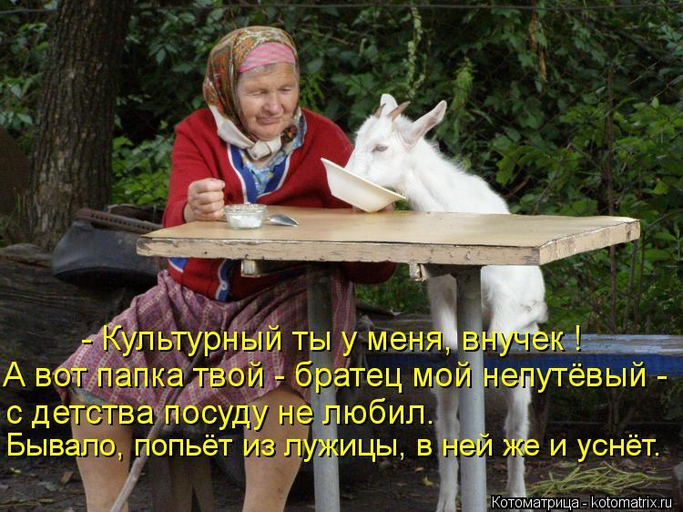 Котоматрица: - Культурный ты у меня, внучек ! А вот папка твой - братец мой непутёвый - с детства посуду не любил. Бывало, попьёт из лужицы, в ней же и уснёт.