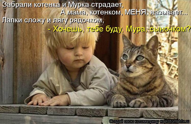 Котоматрица: Забрали котенка и Мурка страдает, А мама, котенком, МЕНЯ, называет... Лапки сложу и лягу рядочком, - Хочешь, тебе буду, Мура, сыночком?