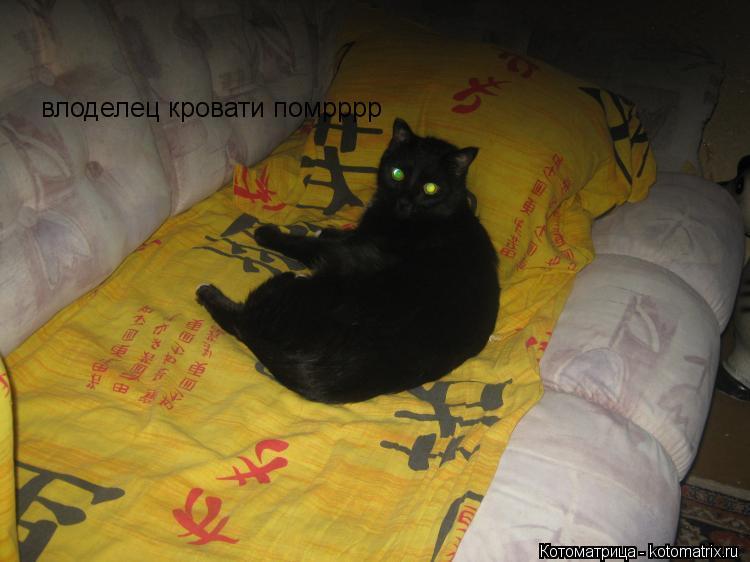 Котоматрица: влоделец кровати помрррр
