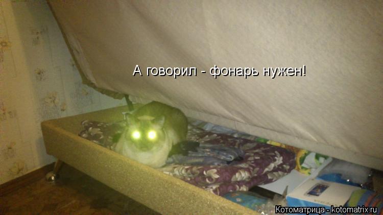 Котоматрица: А говорил - фонарь нужен!