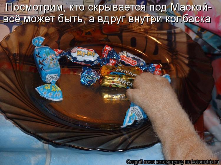 Котоматрица: Посмотрим, кто скрывается под Маской- всё может быть, а вдруг внутри колбаска