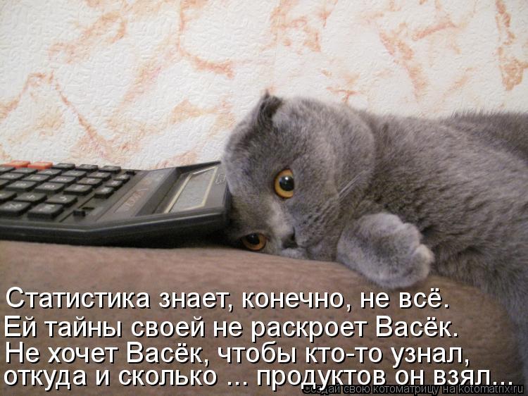Котоматрица: Не хочет Васёк, чтобы кто-то узнал, откуда и сколько ... продуктов он взял... Ей тайны своей не раскроет Васёк. Статистика знает, конечно, не всё