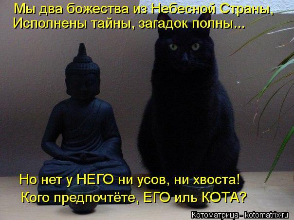 Котоматрица: Мы два божества из Небесной Страны, Исполнены тайны, загадок полны... Кого предпочтёте, ЕГО иль КОТА? Но нет у НЕГО ни усов, ни хвоста!