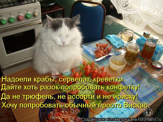 Котоматрица: Надоели крабы, сервелат, креветки. Дайте хоть разок попробовать конфетку! Да не трюфель, не ассорти и не ириску! Хочу попробовать обычный пр