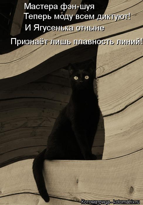 Котоматрица: Мастера фэн-шуя  Теперь моду всем диктуют! И Ягусенька отныне Признаёт лишь плавность линий!