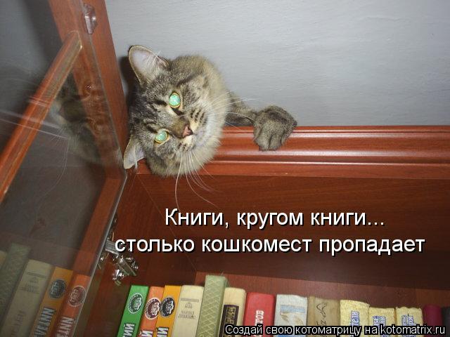 Котоматрица: Книги, кругом книги... столько кошкомест пропадает