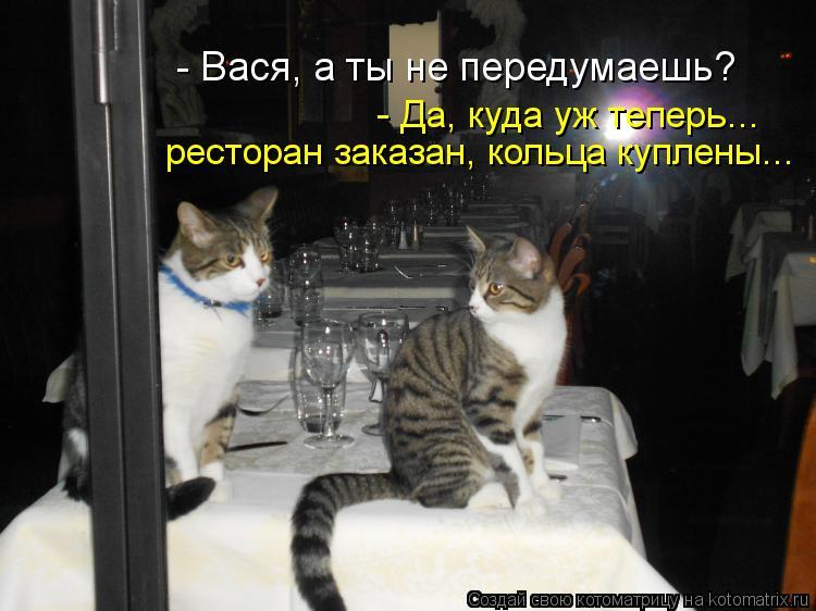 Котоматрица: ресторан заказан, кольца куплены... - Да, куда уж теперь... - Вася, а ты не передумаешь?