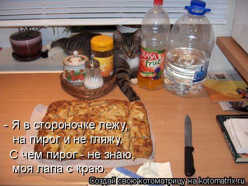 Котоматрица: - Я в стороночке лежу, на пирог и не гляжу. С чем пирог - не знаю, моя лапа с краю.